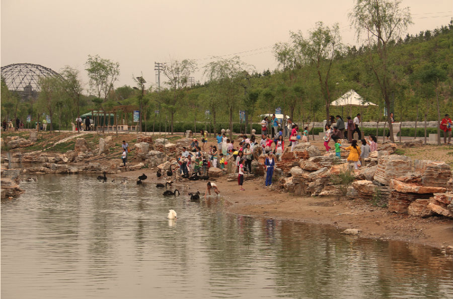 动物园特开设了游客与动物互动